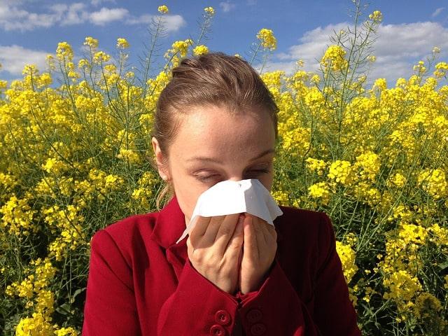 Staubsauger mit Wasserfilter für Allergiker